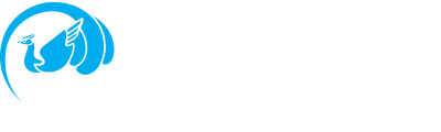 Phoenix Pacific Enterprises, Inc. — Graphic Imaging & Converting